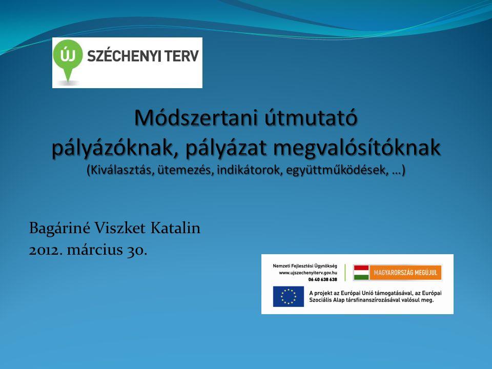 Bagáriné Viszket Katalin 2012. március 30.