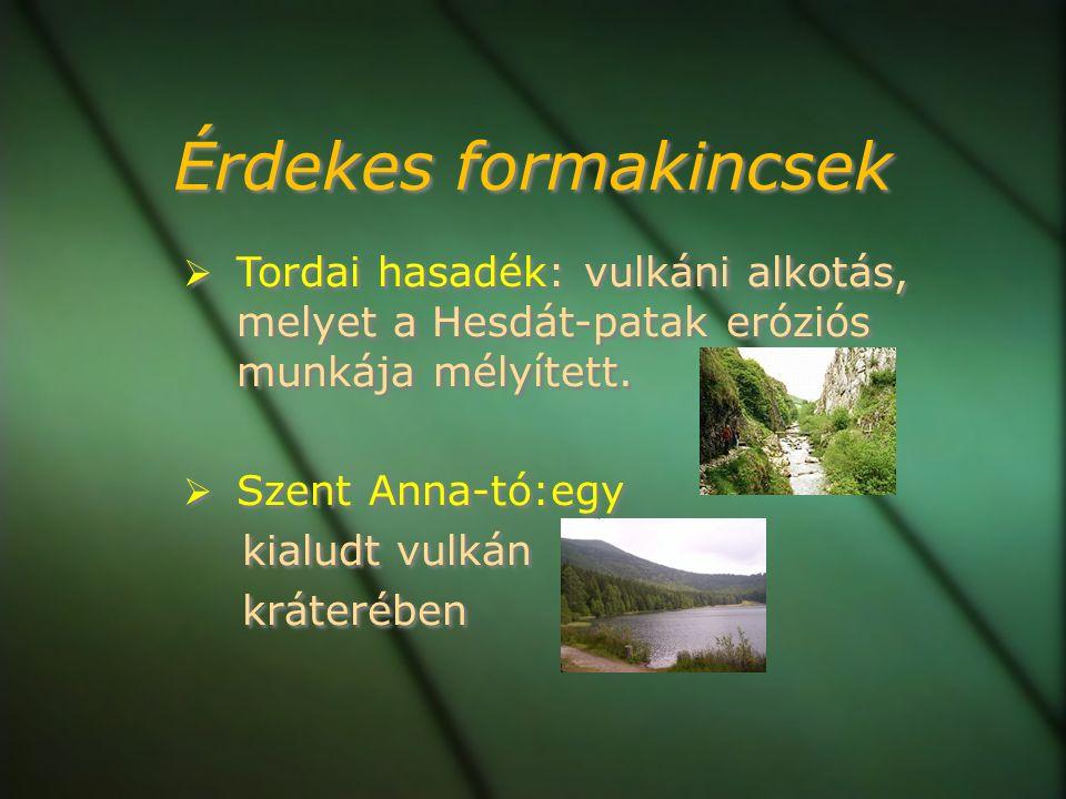 Érdekes formakincsek  Tordai hasadék: vulkáni alkotás, melyet a Hesdát-patak eróziós munkája mélyített.