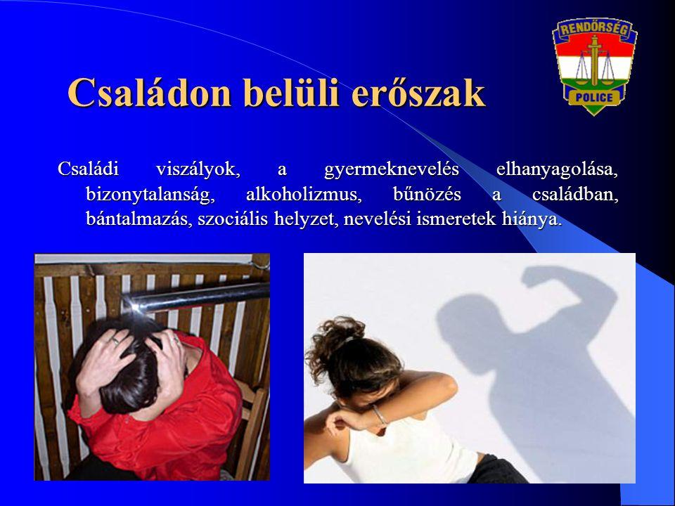 Családi viszályok, a gyermeknevelés elhanyagolása, bizonytalanság, alkoholizmus, bűnözés a családban, bántalmazás, szociális helyzet, nevelési ismeret