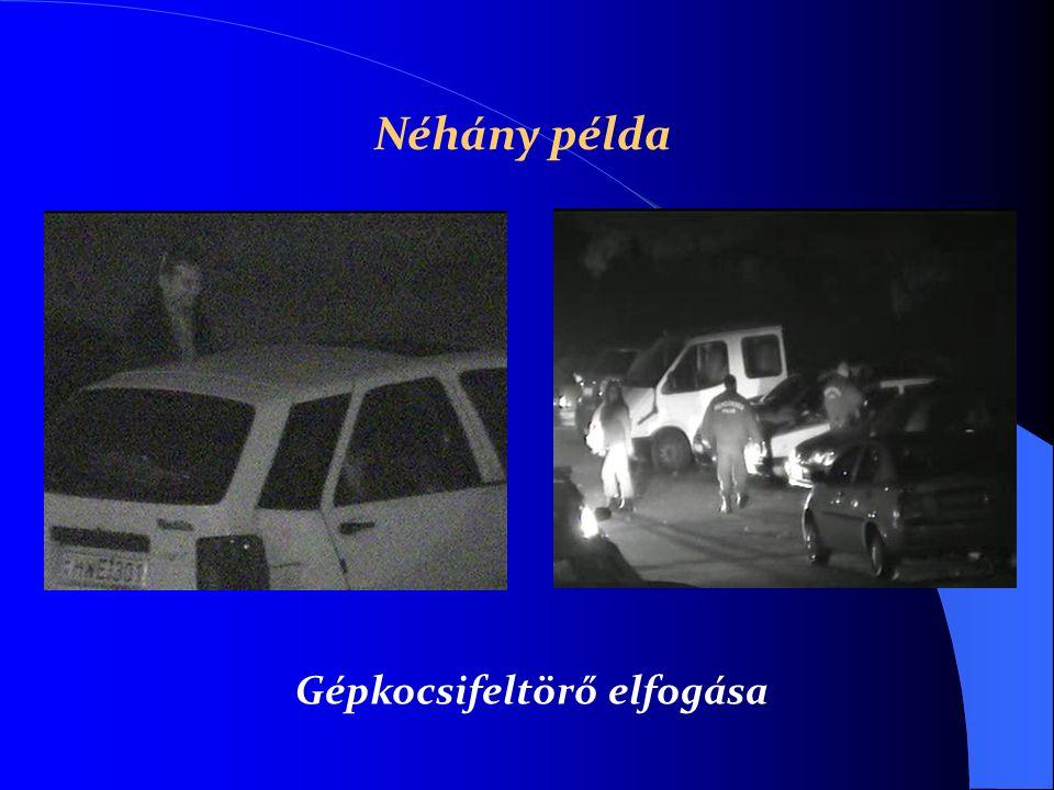 Gépkocsifeltörő elfogása Néhány példa