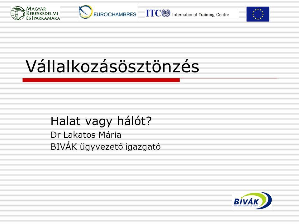 Vállalkozásösztönzés Halat vagy hálót? Dr Lakatos Mária BIVÁK ügyvezető igazgató