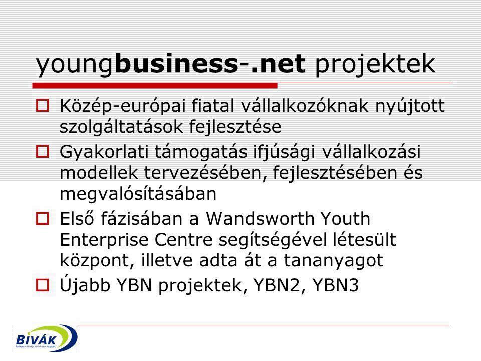 youngbusiness-.net projektek  Közép-európai fiatal vállalkozóknak nyújtott szolgáltatások fejlesztése  Gyakorlati támogatás ifjúsági vállalkozási modellek tervezésében, fejlesztésében és megvalósításában  Első fázisában a Wandsworth Youth Enterprise Centre segítségével létesült központ, illetve adta át a tananyagot  Újabb YBN projektek, YBN2, YBN3