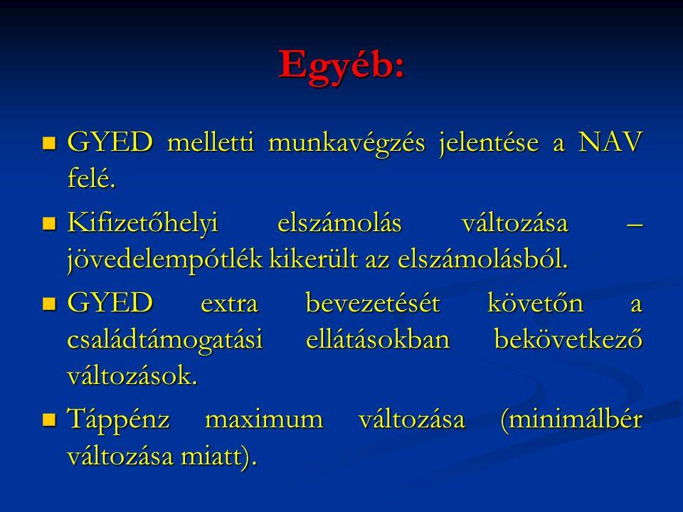 Egyéb: GYED melletti munkavégzés jelentése a NAV felé.