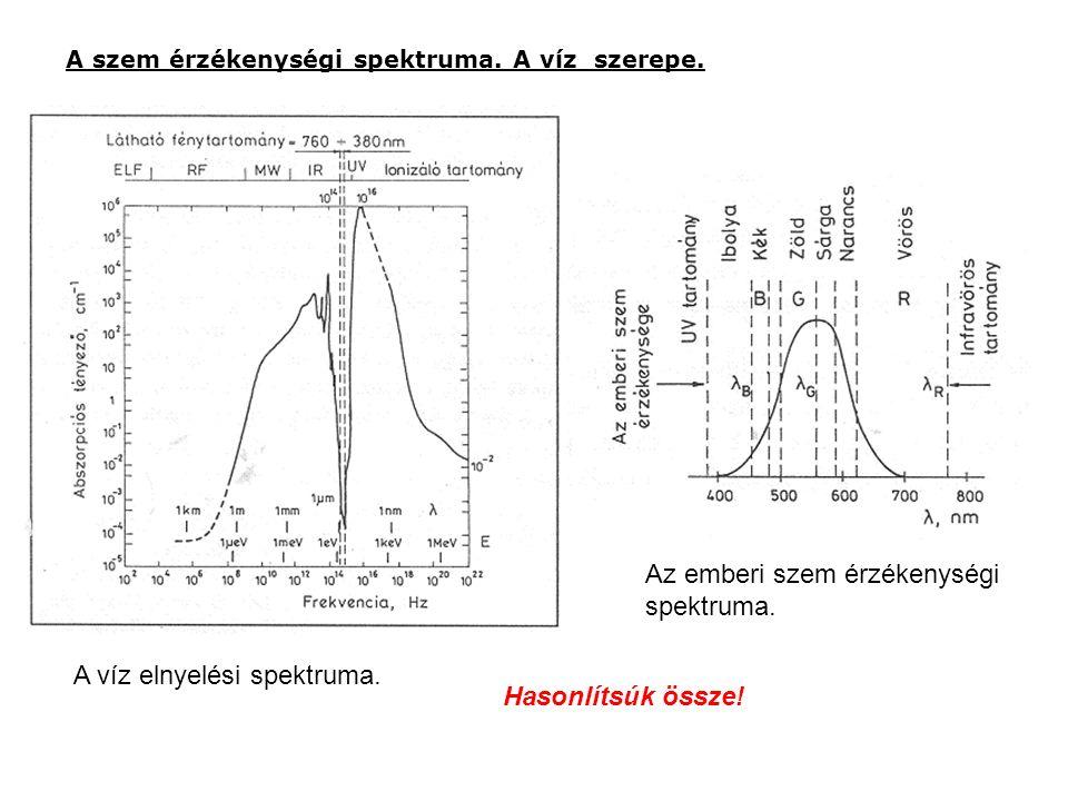 A szem érzékenységi spektruma. A víz szerepe. A víz elnyelési spektruma. Az emberi szem érzékenységi spektruma. Hasonlítsúk össze!