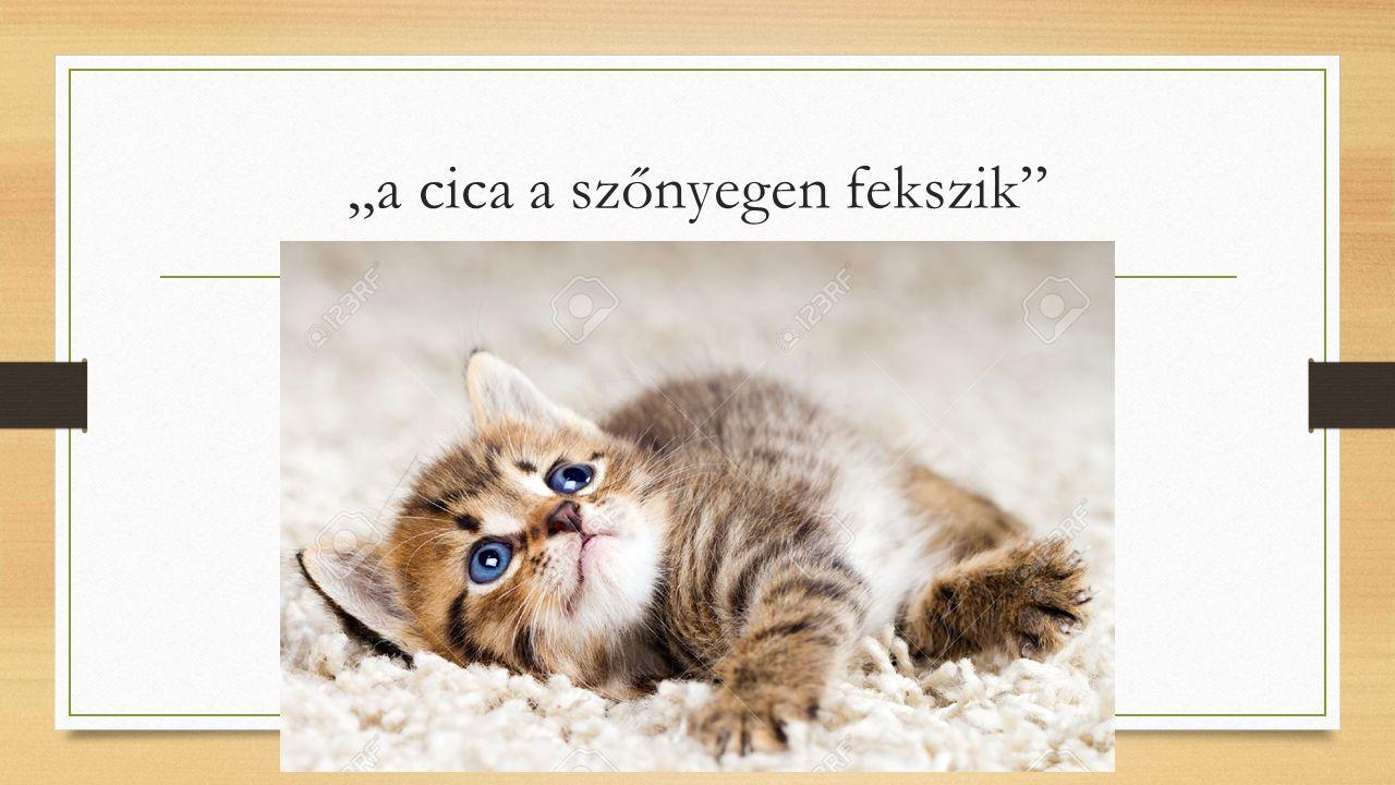 """""""a cica a szőnyegen fekszik"""