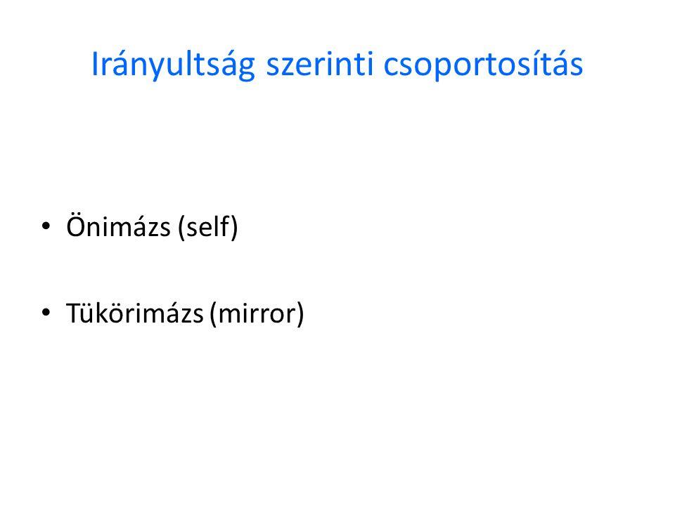 Irányultság szerinti csoportosítás Önimázs (self) Tükörimázs (mirror)