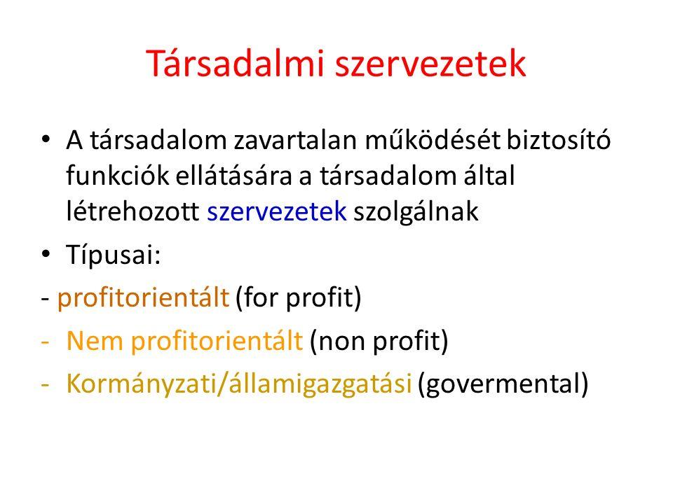 Társadalmi szervezetek A társadalom zavartalan működését biztosító funkciók ellátására a társadalom által létrehozott szervezetek szolgálnak Típusai: - profitorientált (for profit) -Nem profitorientált (non profit) -Kormányzati/államigazgatási (govermental)