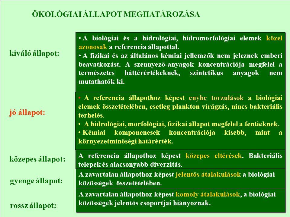 ÖKOLÓGIAI ÁLLAPOT MEGHATÁROZÁSA kiváló állapot: A biológiai és a hidrológiai, hidromorfológiai elemek közel azonosak a referencia állapottal.