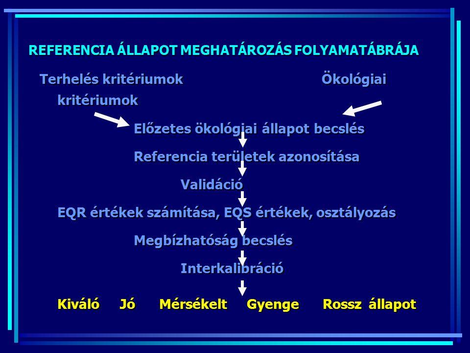 REFERENCIA ÁLLAPOT MEGHATÁROZÁS FOLYAMATÁBRÁJA Terhelés kritériumokÖkológiai kritériumok Előzetes ökológiai állapot becslés Referencia területek azonosítása Validáció EQR értékek számítása, EQS értékek, osztályozás Megbízhatóság becslés Interkalibráció Interkalibráció Kiváló Jó Mérsékelt Gyenge Rossz állapot