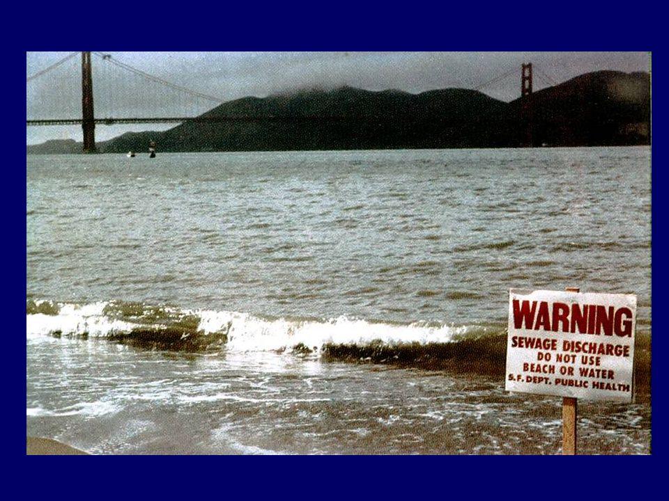 VÍZMINŐSÍTÉS: Természetes vizek minősége: MSZ 12749 (1993): Felszíni vizek minősége, minőségi jellemzők és minősítés (EU VKI szerinti minősítési rendszer még kidolgozás alatt, (elvek: 31/2004 (XII.30.) KvVM rendelet a felszíni vizek megfigyeléséről és állapotértékeléséről) MSZ 10433:1 (1984): Felszín alatti vizek minősége, értékelési és minősítési rendszer Használat szerinti vízminőségi követelmények: 201/2001.