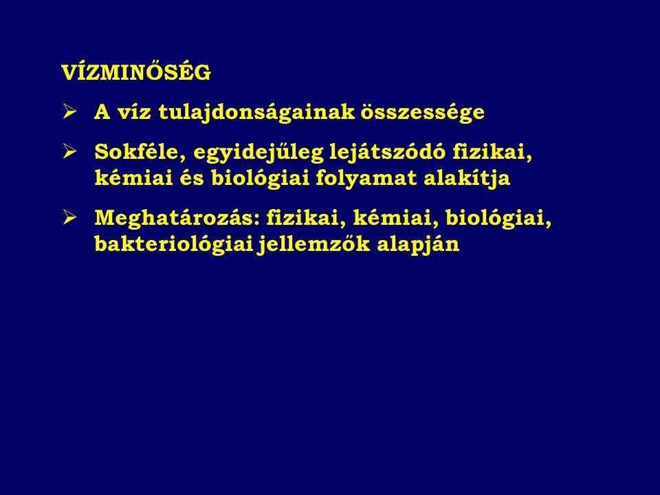 Vizsgálandó jellemzők: Oxigén háztartás (Old O 2, O 2 %, BOI, KOI, TOC, Szapr.index) Tápanyag háztartás (N- P formák, Chl-a) Mikrobiológiai jellemzők (CF, FCF, FS, Salm.) Mikroszennyezők és toxicitás (szervetlen és szerves mikroszennyezők, toxicitás, radioaktív anyagok) Egyéb jellemzők (pH, vez.kép., T, LA, OA, Fe, Mn, keménység, an- és kationok) Vízminőségi osztályozás: 5 vízminőségi osztály (I - V) Besorolás 90 %-os tartósság alapján MSZ 12749 (1993): Felszíni vizek minősége, minőségi jellemzők és minősítés
