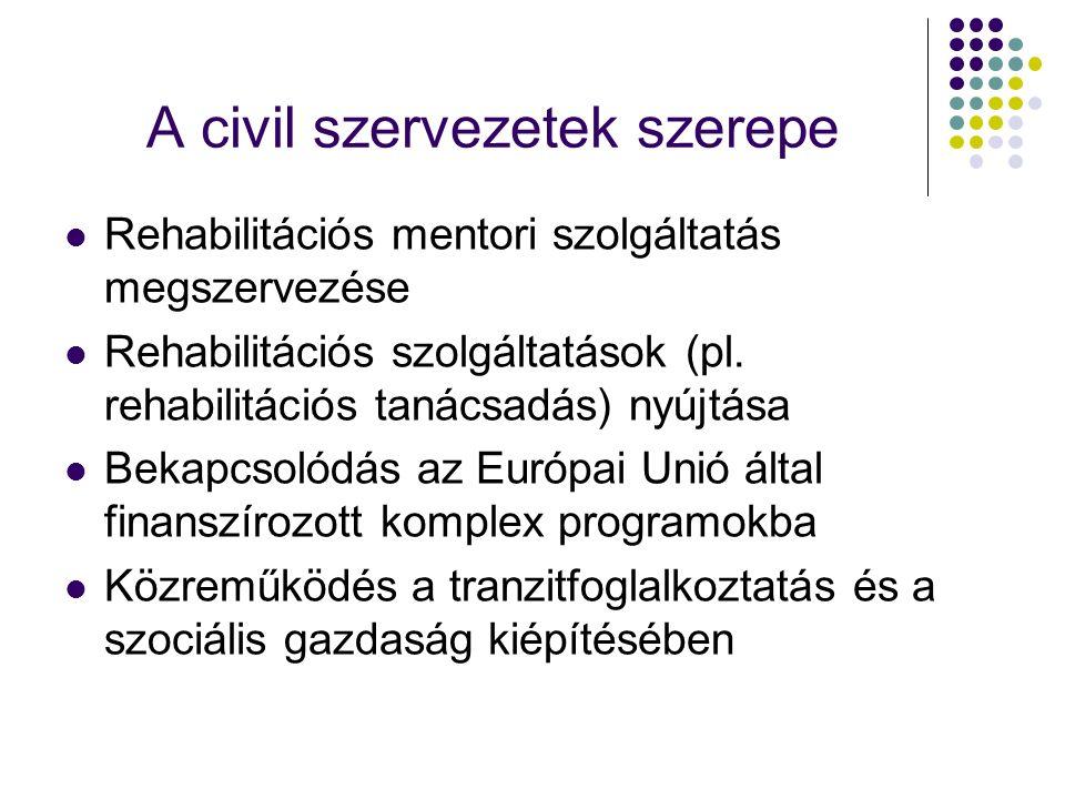 A civil szervezetek szerepe Rehabilitációs mentori szolgáltatás megszervezése Rehabilitációs szolgáltatások (pl. rehabilitációs tanácsadás) nyújtása B