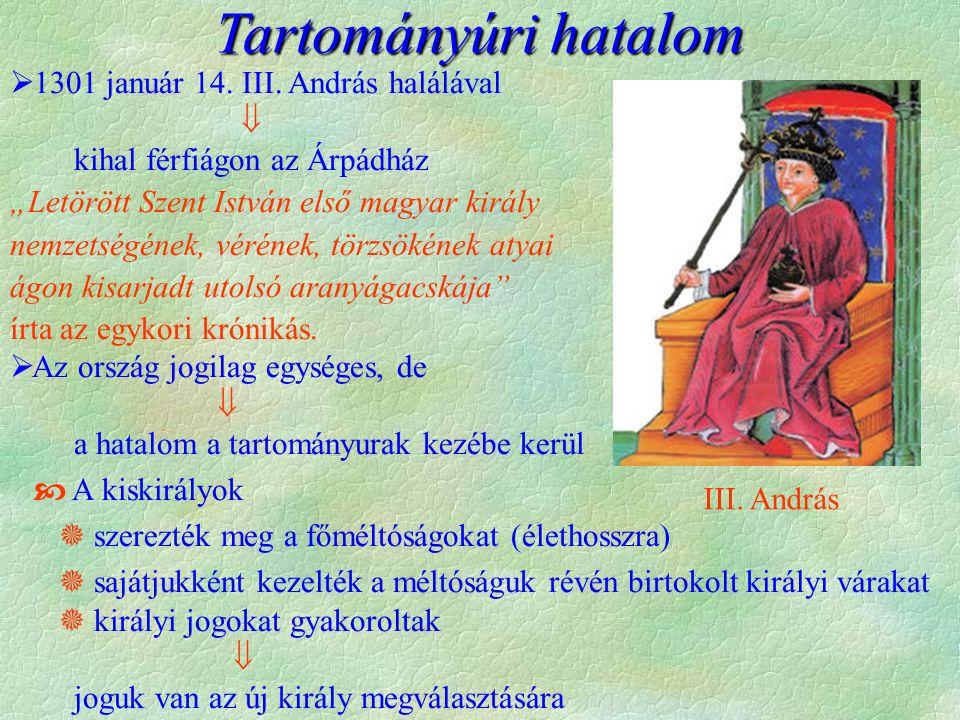 Tartományúri hatalom  1301 január 14.III.