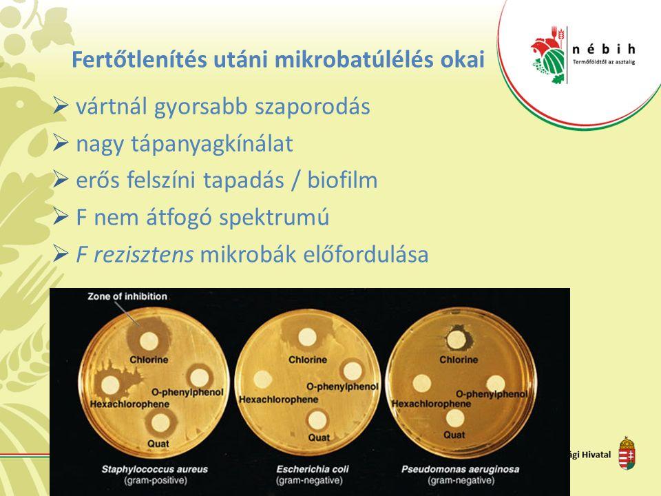 Fertőtlenítés utáni mikrobatúlélés okai  vártnál gyorsabb szaporodás  nagy tápanyagkínálat  erős felszíni tapadás / biofilm  F nem átfogó spektrumú  F rezisztens mikrobák előfordulása