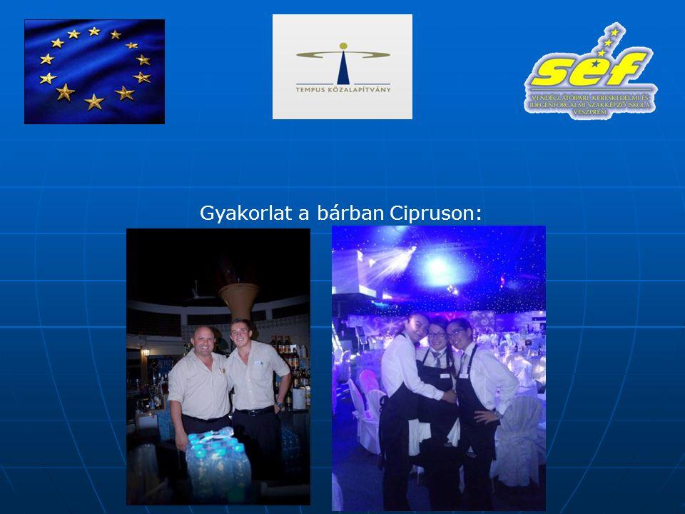 Gyakorlat a bárban Cipruson: