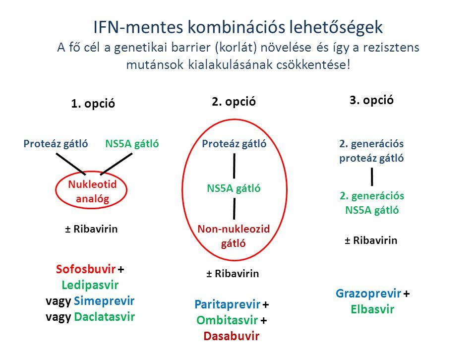 IFN-mentes kombinációs lehetőségek A fő cél a genetikai barrier (korlát) növelése és így a rezisztens mutánsok kialakulásának csökkentése.