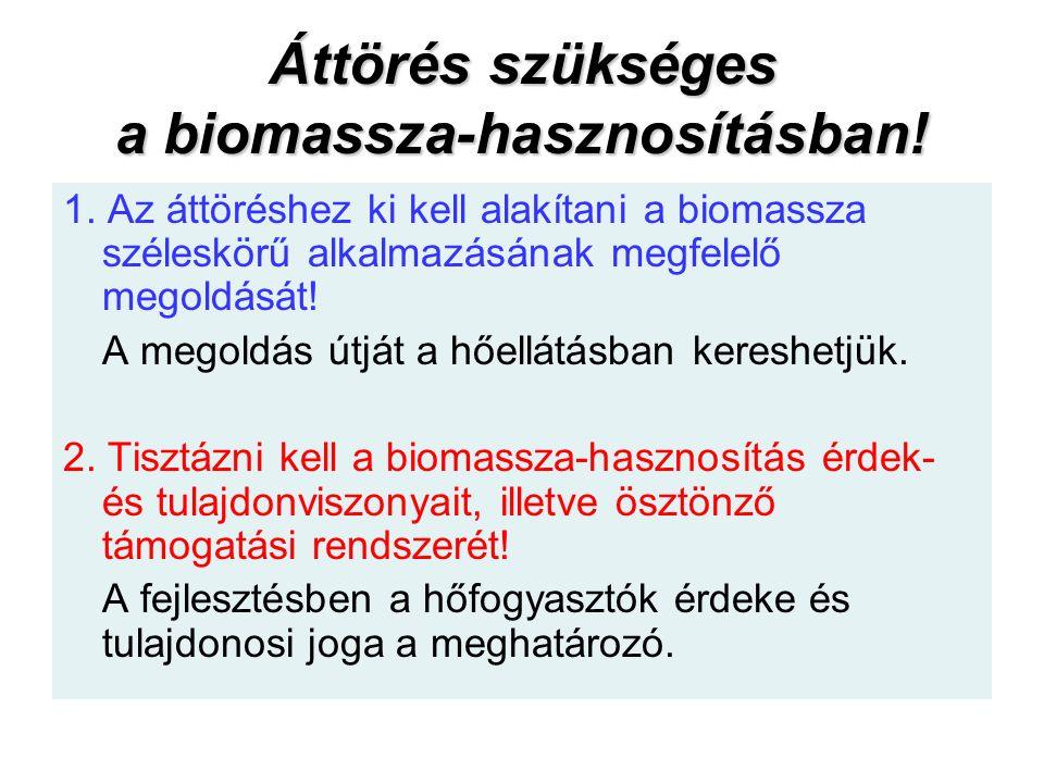 Áttörés szükséges a biomassza-hasznosításban.1.