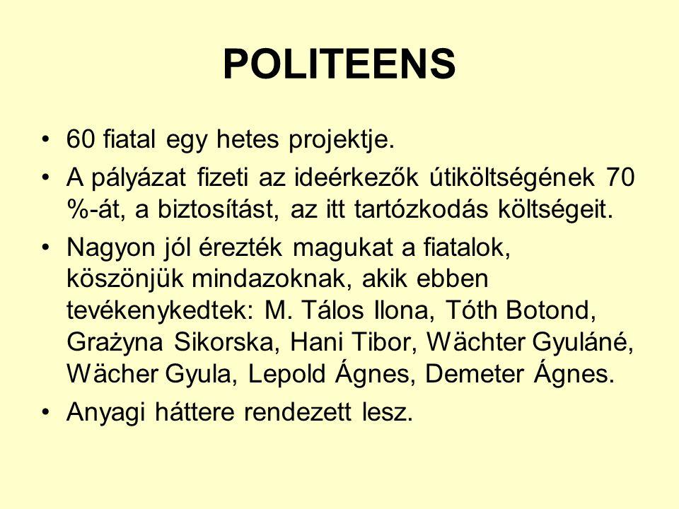 POLITEENS 60 fiatal egy hetes projektje.