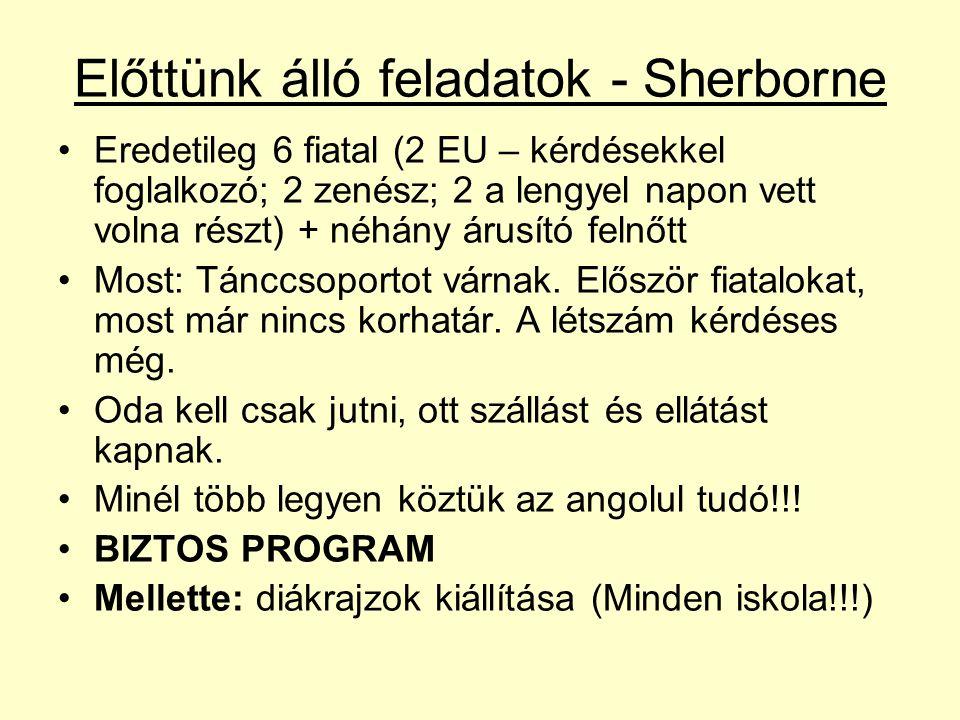 Előttünk álló feladatok - Sherborne Eredetileg 6 fiatal (2 EU – kérdésekkel foglalkozó; 2 zenész; 2 a lengyel napon vett volna részt) + néhány árusító felnőtt Most: Tánccsoportot várnak.