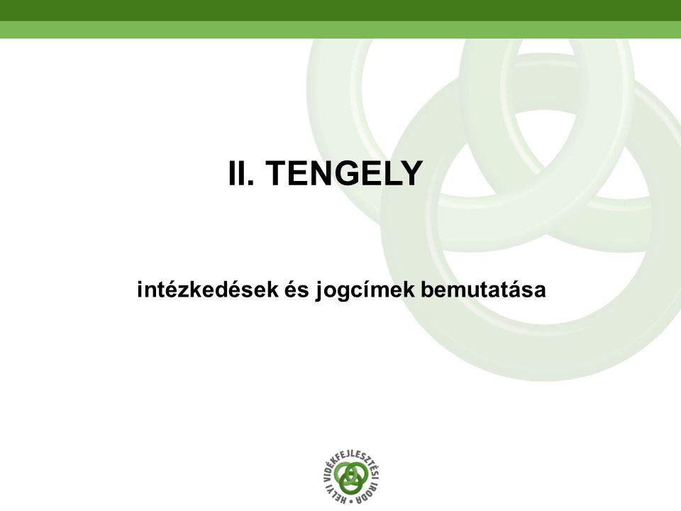 38 intézkedések és jogcímek bemutatása II. TENGELY