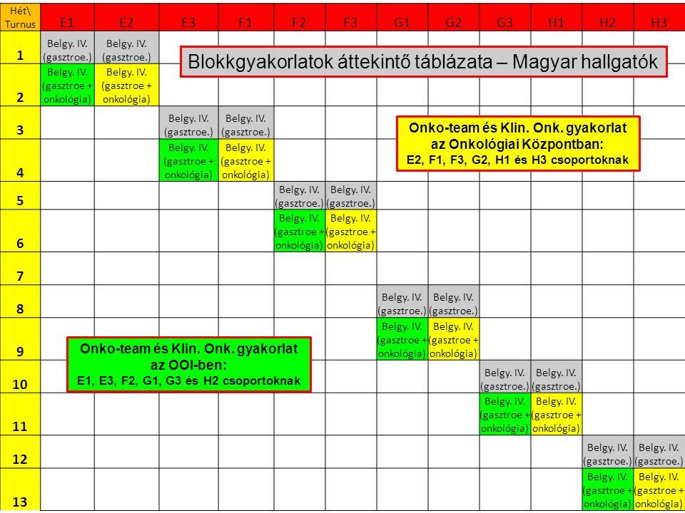 Hét\ Turnus E1E2E3F1F2F3G1G2G3H1H2H3 1 Belgy. IV. (gasztroe.) 2 Belgy. IV. (gasztroe + onkológia) 3 Belgy. IV. (gasztroe.) 4 Belgy. IV. (gasztroe + on