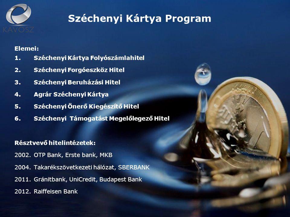 Elemei: 1.Széchenyi Kártya Folyószámlahitel 2.Széchenyi Forgóeszköz Hitel 3.Széchenyi Beruházási Hitel 4.Agrár Széchenyi Kártya 5.Széchenyi Önerő Kiegészítő Hitel 6.Széchenyi Támogatást Megelőlegező Hitel Résztvevő hitelintézetek: 2002.OTP Bank, Erste bank, MKB 2004.Takarékszövetkezeti hálózat, SBERBANK 2011.Gránitbank, UniCredit, Budapest Bank 2012.Raiffeisen Bank Széchenyi Kártya Program