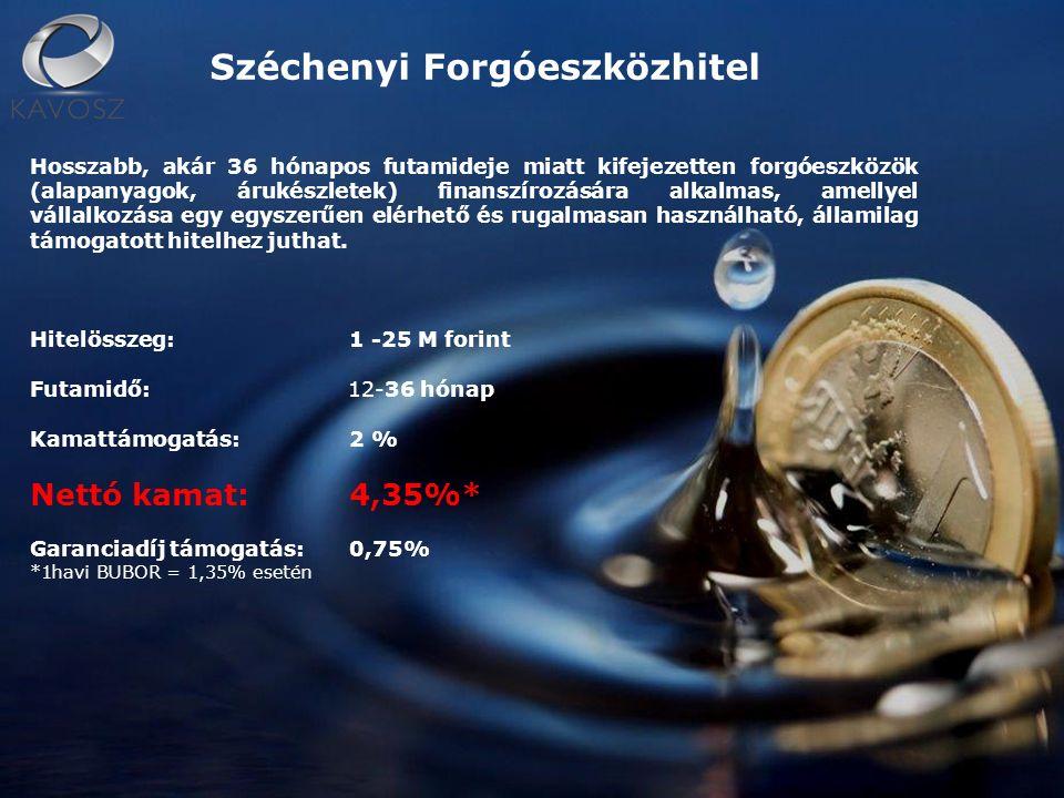 Széchenyi Forgóeszközhitel Hosszabb, akár 36 hónapos futamideje miatt kifejezetten forgóeszközök (alapanyagok, árukészletek) finanszírozására alkalmas, amellyel vállalkozása egy egyszerűen elérhető és rugalmasan használható, államilag támogatott hitelhez juthat.