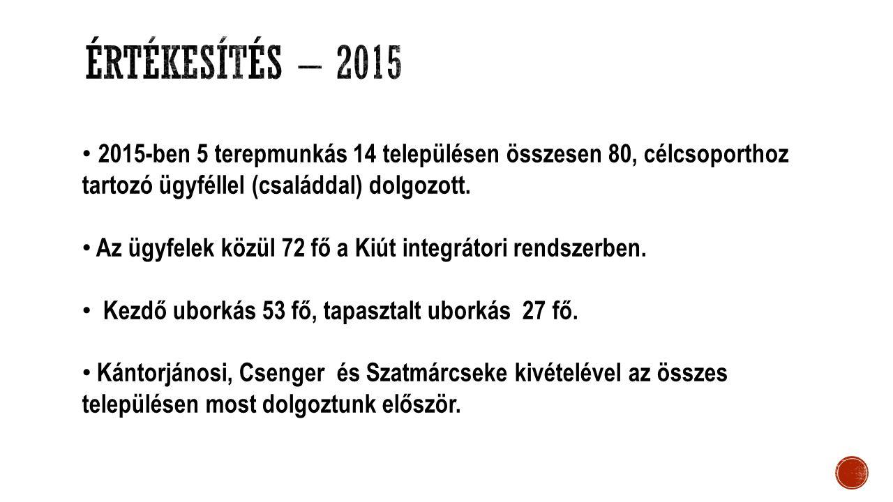 2015-ben 5 terepmunkás 14 településen összesen 80, célcsoporthoz tartozó ügyféllel (családdal) dolgozott. Az ügyfelek közül 72 fő a Kiút integrátori r