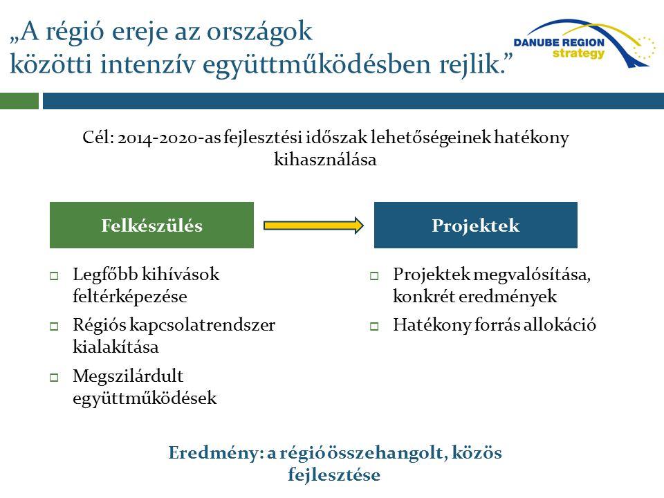  Legfőbb kihívások feltérképezése  Régiós kapcsolatrendszer kialakítása  Megszilárdult együttműködések  Projektek megvalósítása, konkrét eredménye