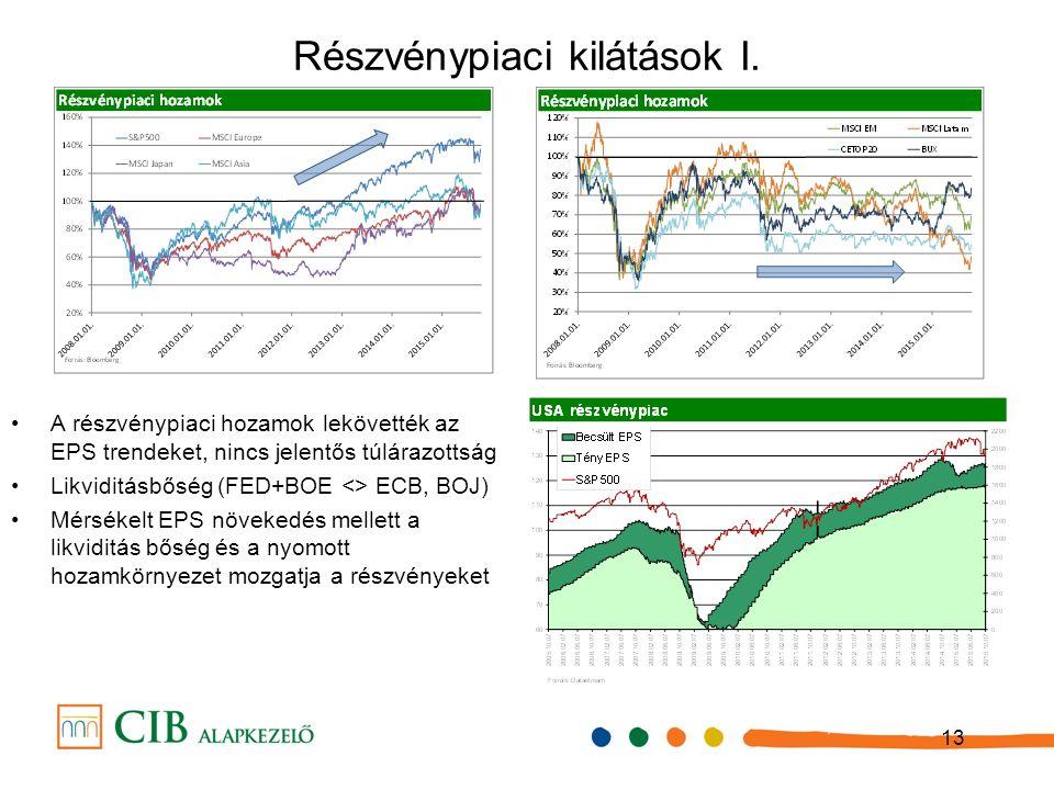 13 Részvénypiaci kilátások I.