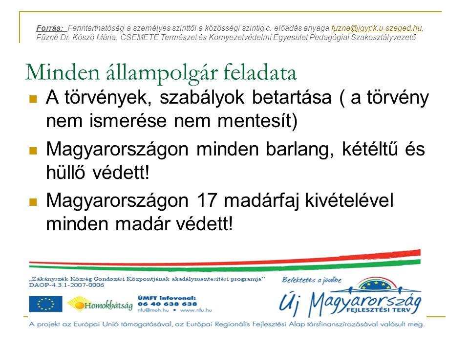 Minden állampolgár feladata A törvények, szabályok betartása ( a törvény nem ismerése nem mentesít) Magyarországon minden barlang, kétéltű és hüllő vé