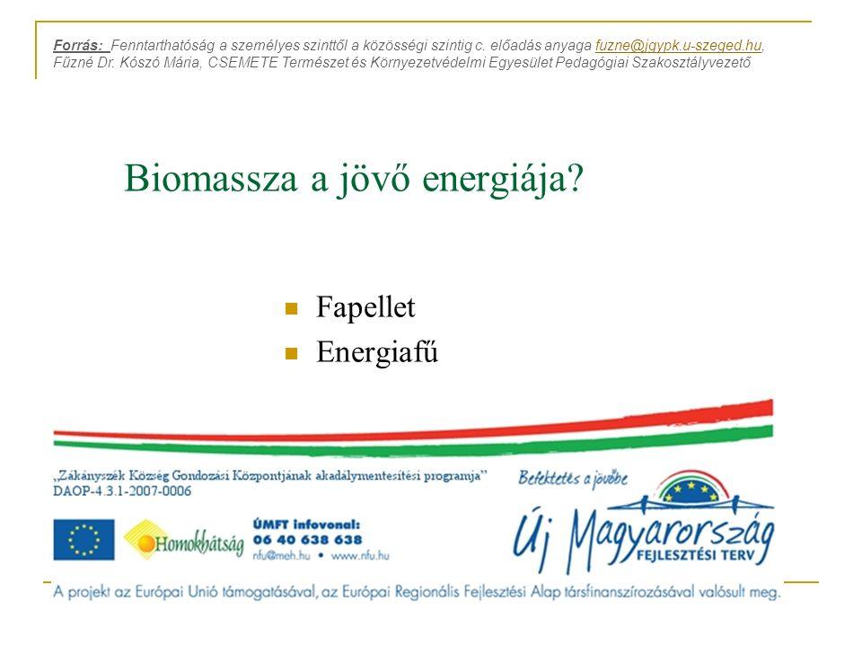 Biomassza a jövő energiája? Fapellet Energiafű Forrás: Fenntarthatóság a személyes szinttől a közösségi szintig c. előadás anyaga fuzne@jgypk.u-szeged