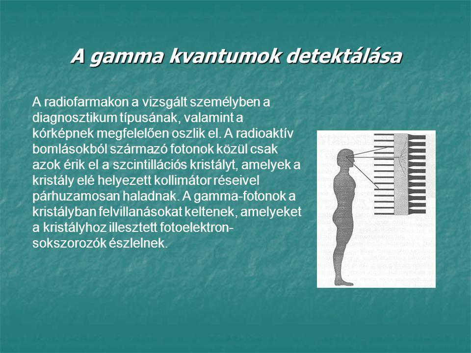 A gamma kvantumok detektálása A radiofarmakon a vizsgált személyben a diagnosztikum típusának, valamint a kórképnek megfelelően oszlik el. A radioaktí