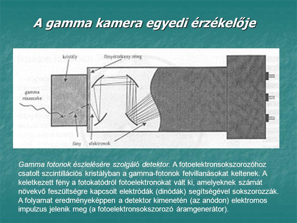 A gamma kamera egyedi érzékelője Gamma fotonok észlelésére szolgáló detektor. A fotoelektronsokszorozóhoz csatolt szcintillációs kristályban a gamma-f