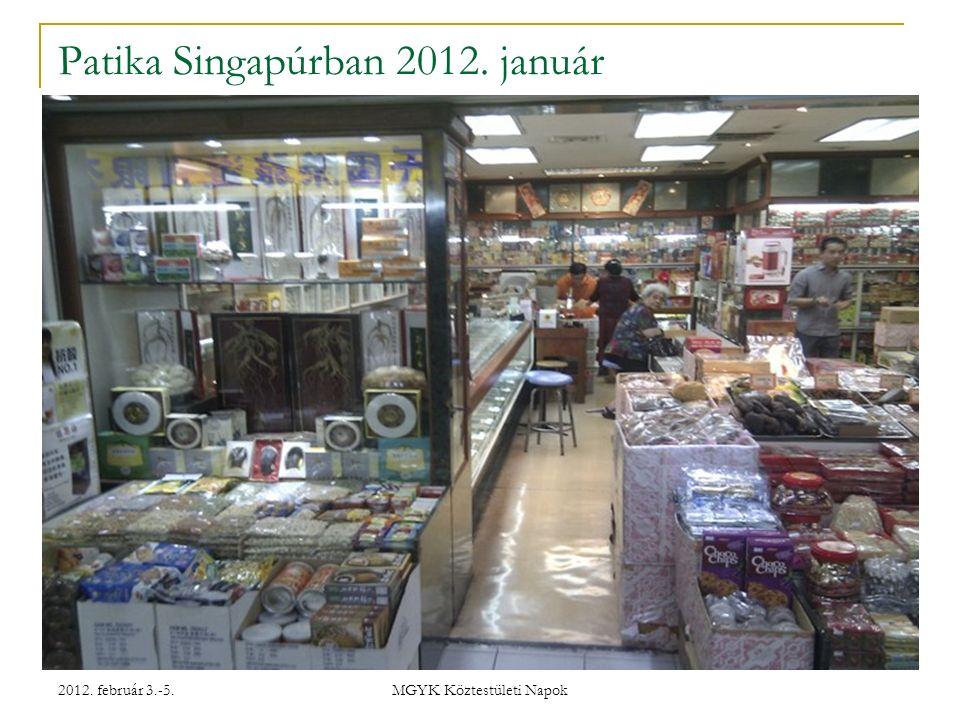 2012. február 3.-5. MGYK Köztestületi Napok Patika Singapúrban 2012. január