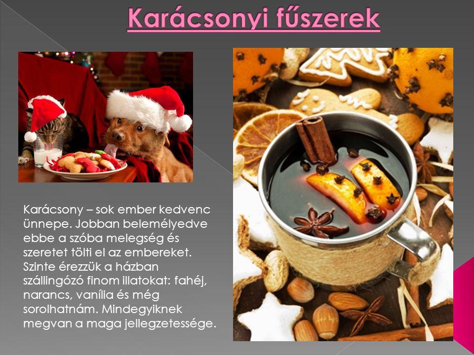 Karácsony – sok ember kedvenc ünnepe.