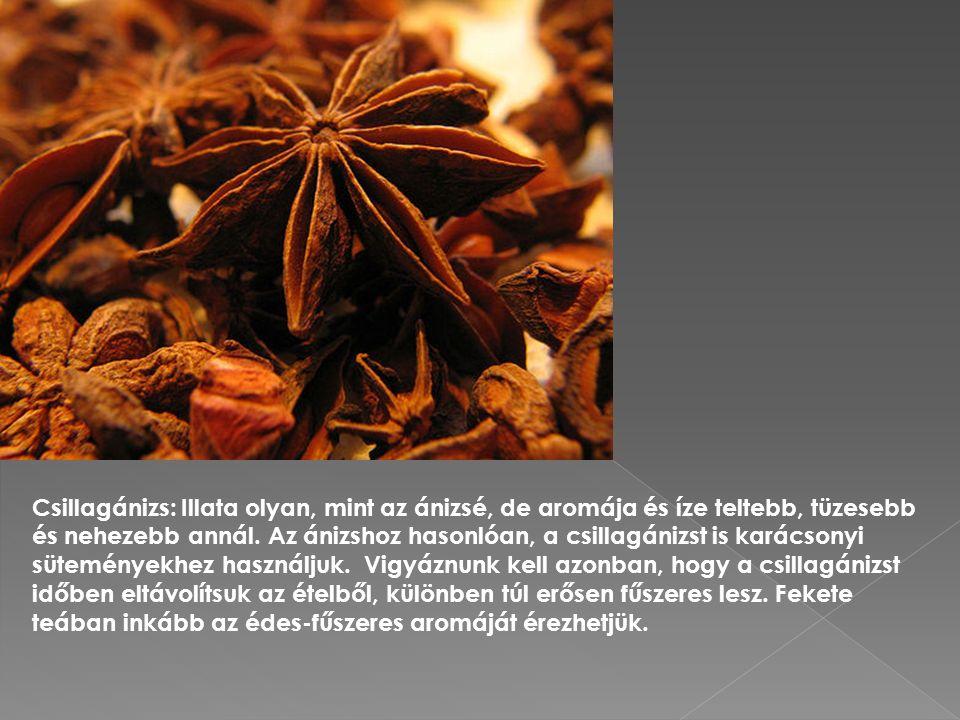 Csillagánizs: Illata olyan, mint az ánizsé, de aromája és íze teltebb, tüzesebb és nehezebb annál.