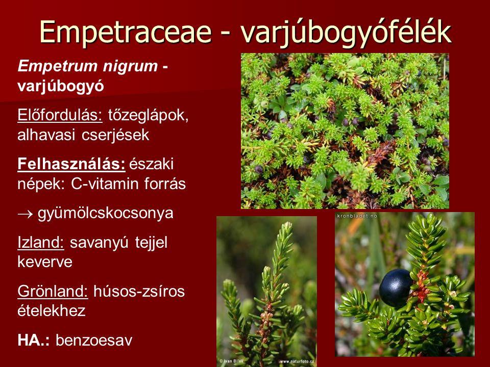 Empetraceae - varjúbogyófélék Empetrum nigrum - varjúbogyó Előfordulás: tőzeglápok, alhavasi cserjések Felhasználás: északi népek: C-vitamin forrás 