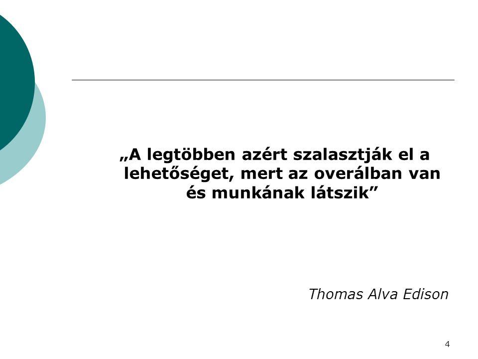 """""""A legtöbben azért szalasztják el a lehetőséget, mert az overálban van és munkának látszik"""" Thomas Alva Edison 4"""