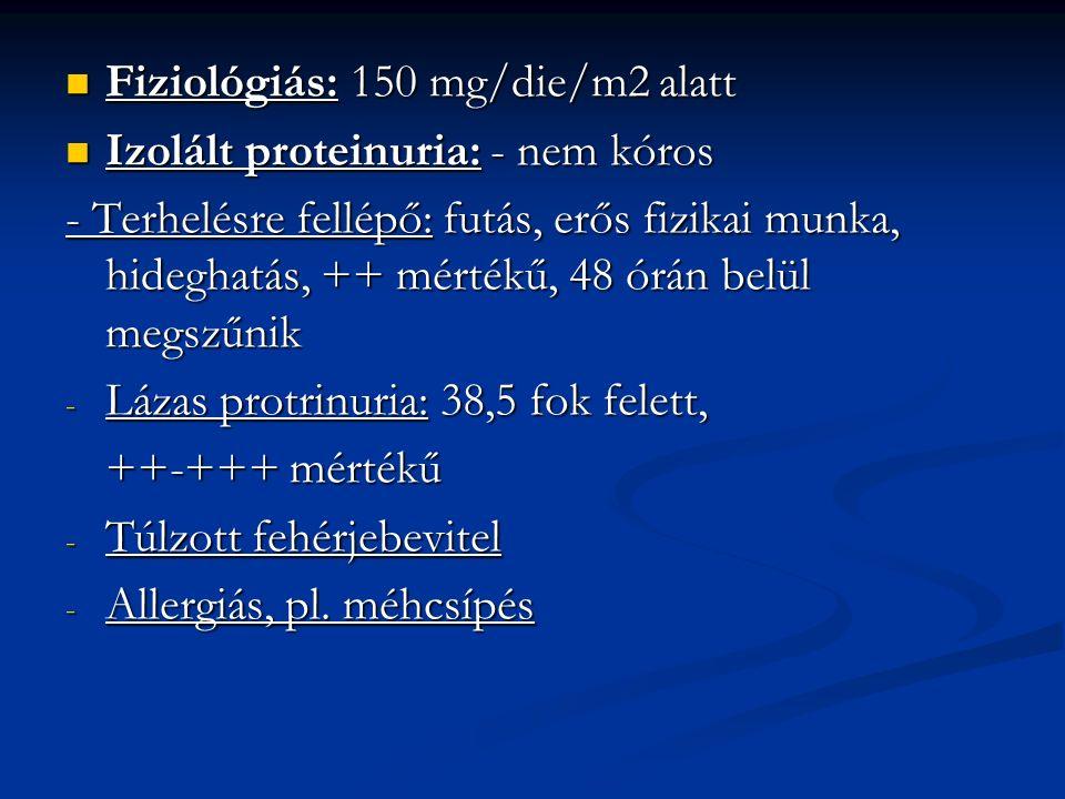 Fiziológiás: 150 mg/die/m2 alatt Fiziológiás: 150 mg/die/m2 alatt Izolált proteinuria: - nem kóros Izolált proteinuria: - nem kóros - Terhelésre fellépő: futás, erős fizikai munka, hideghatás, ++ mértékű, 48 órán belül megszűnik - Lázas protrinuria: 38,5 fok felett, ++-+++ mértékű - Túlzott fehérjebevitel - Allergiás, pl.