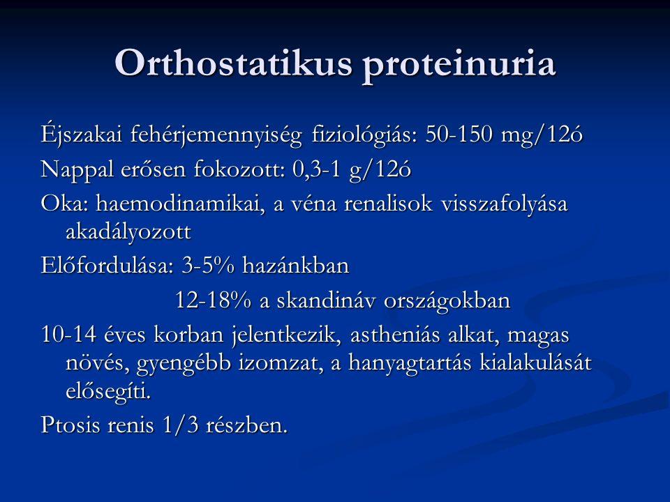 Orthostatikus proteinuria Éjszakai fehérjemennyiség fiziológiás: 50-150 mg/12ó Nappal erősen fokozott: 0,3-1 g/12ó Oka: haemodinamikai, a véna renalisok visszafolyása akadályozott Előfordulása: 3-5% hazánkban 12-18% a skandináv országokban 10-14 éves korban jelentkezik, astheniás alkat, magas növés, gyengébb izomzat, a hanyagtartás kialakulását elősegíti.
