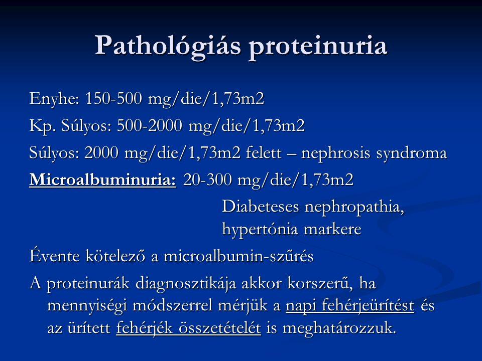 Pathológiás proteinuria Enyhe: 150-500 mg/die/1,73m2 Kp. Súlyos: 500-2000 mg/die/1,73m2 Súlyos: 2000 mg/die/1,73m2 felett – nephrosis syndroma Microal
