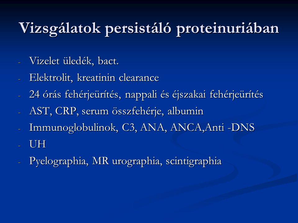 Vizsgálatok persistáló proteinuriában - Vizelet üledék, bact. - Elektrolit, kreatinin clearance - 24 órás fehérjeürítés, nappali és éjszakai fehérjeür
