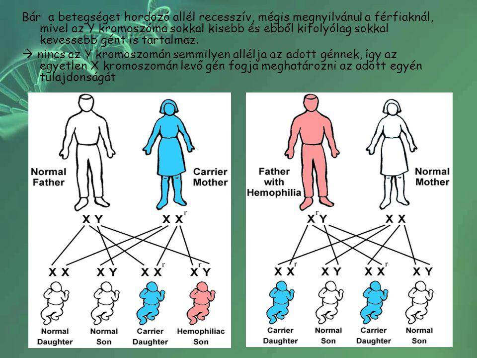 Bár a betegséget hordozó allél recesszív, mégis megnyilvánul a férfiaknál, mivel az Y kromoszóma sokkal kisebb és ebből kifolyólag sokkal kevessebb gént is tartalmaz.