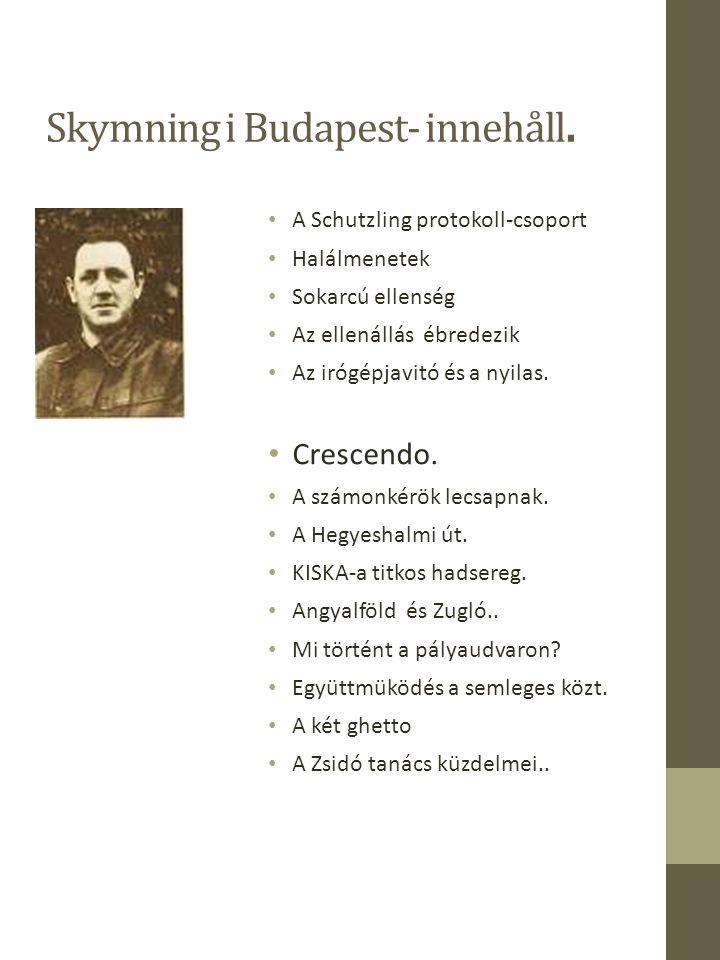Skymning i Budapest-innehåll.Küzdelem éjjel, nappal.