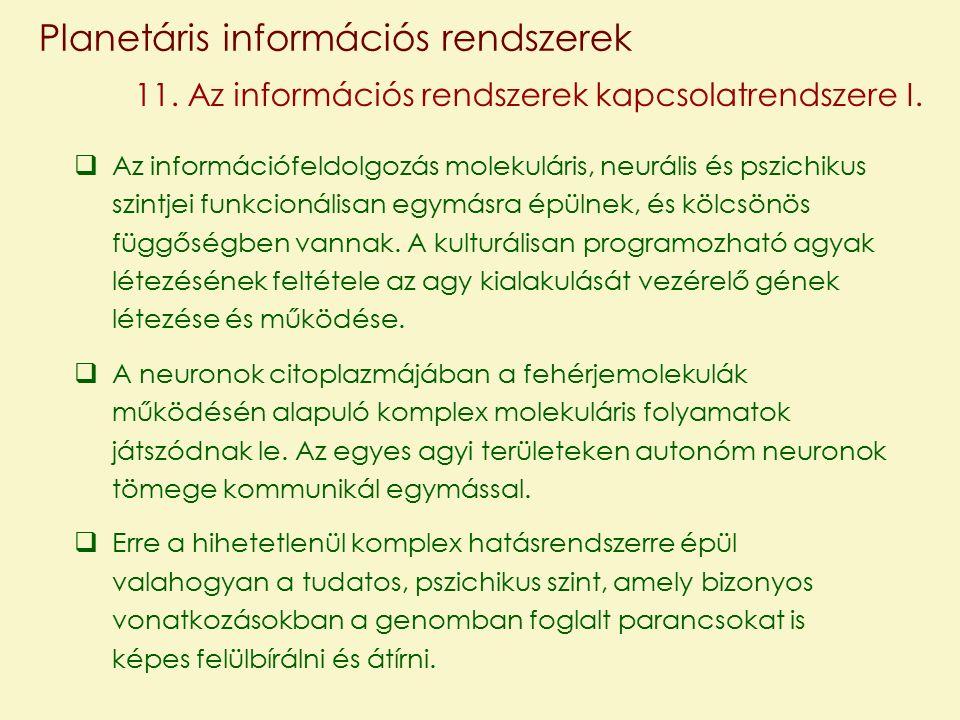 Planetáris információs rendszerek 11. Az információs rendszerek kapcsolatrendszere I.