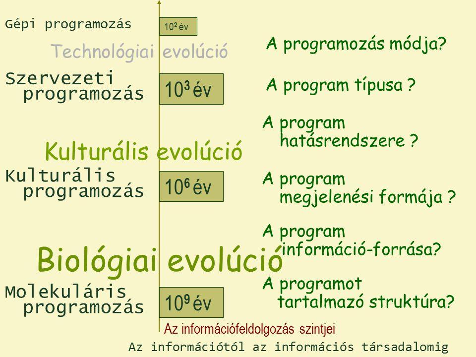 Molekuláris programozás Kulturális programozás Szervezeti programozás Gépi programozás 10 9 év 10 6 év 10 3 év 10 2 év Az információfeldolgozás szintjei Biológiai evolúció Kulturális evolúció Technológiai evolúció Az információtól az információs társadalomig A programot tartalmazó struktúra.