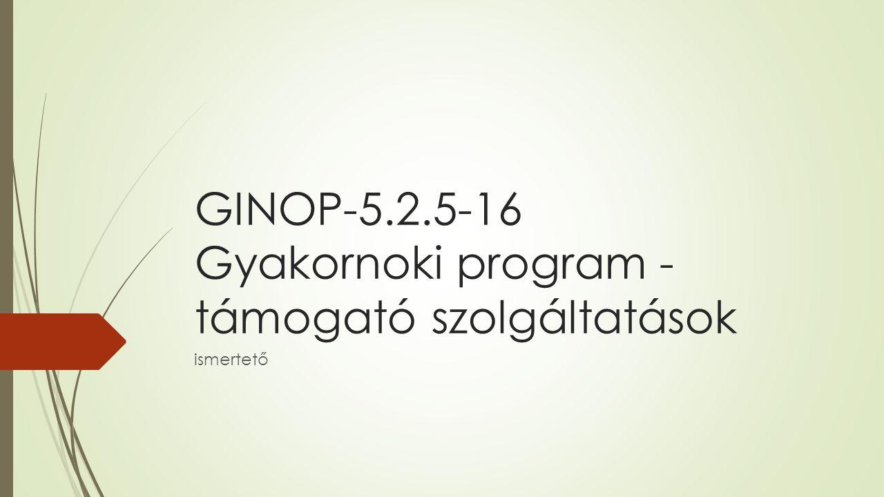 GINOP-5.2.5-16 Gyakornoki program - támogató szolgáltatások ismertető