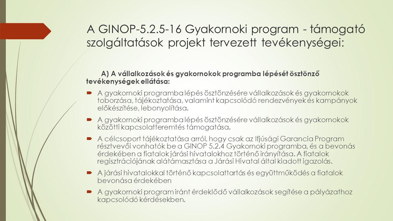 A GINOP-5.2.5-16 Gyakornoki program - támogató szolgáltatások projekt tervezett tevékenységei: A) A vállalkozások és gyakornokok programba lépését ösztönző tevékenységek ellátása:  A gyakornoki programba lépés ösztönzésére vállalkozások és gyakornokok toborzása, tájékoztatása, valamint kapcsolódó rendezvények és kampányok előkészítése, lebonyolítása.