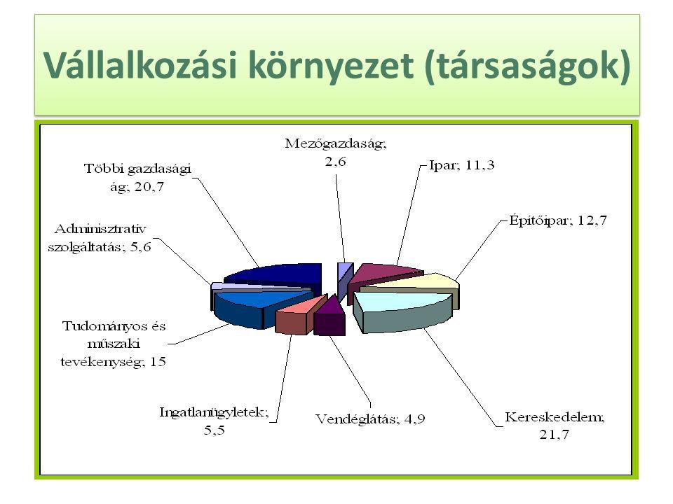 Vállalkozási környezet (társaságok)